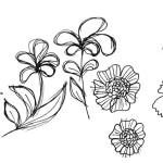 Noch-mehr-Blumen-zeichnen_Titel