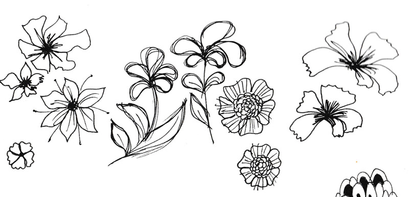 noch mehr blumen zeichnen zeichnen lernen im doodle stil tag 6 creatipster. Black Bedroom Furniture Sets. Home Design Ideas