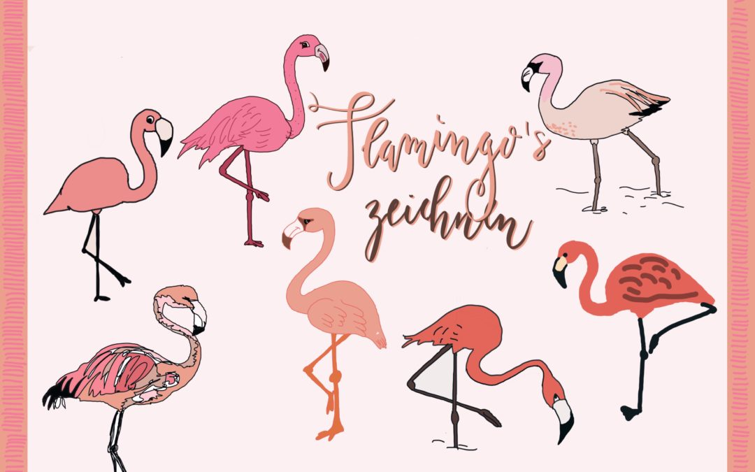 7 Flamingos zeichnen Schritt-für-Schritt – auch für Kinder und natürlich rosa
